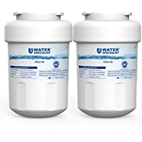 Waterspecialist MWF Replacement Refrigerator Water...