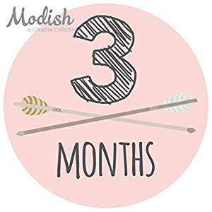 12 Monthly Baby Stickers, Pink, Gray, Tribal, Arrows, Chevron, Baby Month Stickers Girl, Baby Book Keepsake, Baby Shower Gift 4
