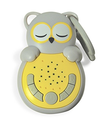 Cloud b Sweet Dreamz On The Go Owl Sound Soother with Audio Activation]()