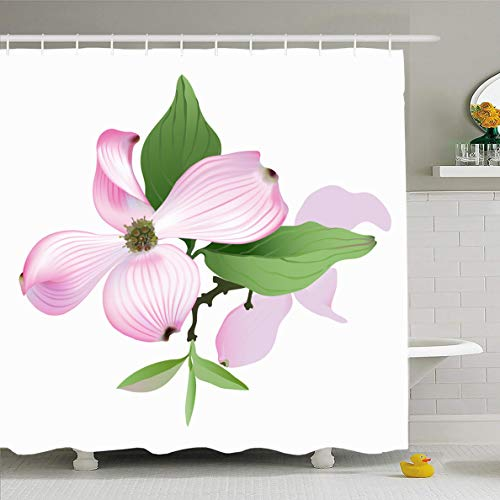 Ahawoso Shower Curtain 66x72 Inches Green Flower Dogwood Pink Nature Hand Tree Blossom Bloom Branch Cornus Waterproof Polyester Fabric Set with Hooks