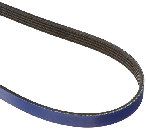 Gates K050425RB Blue Racing Micro-V Belt ()
