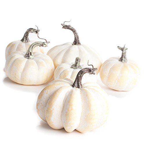Factory Direct Craft Artificial Assorted Creamy White Pumpkins