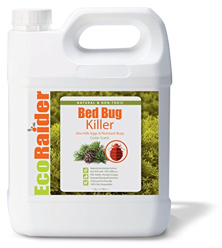 EcoRaider Bed Bug Killer Spray 1 Gallon Jug, Green + Non-toxic, 100% Kill + Extended Protection