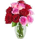 Factoría flor, Ramo de 12 ROSAS FRESCAS NATURALES EN ROSA Y ROJO, POSIBILIDAD DE
