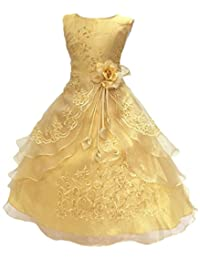 Little/Big Girls Embroidered Beaded Flower Girl Birthday Party Dress with Petticoat