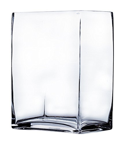 WGV Clear Rectangle Block Glass Vase, 3 by 4 by 5-Inch
