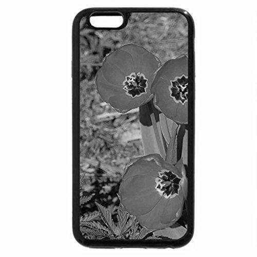 iPhone 6S Plus Case, iPhone 6 Plus Case (Black & White) - Red in the sun