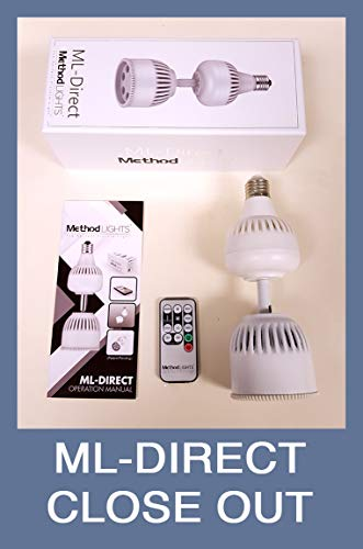 (ML-Direct LED picture Light accent light bulb with remote control, art lighting lamp)
