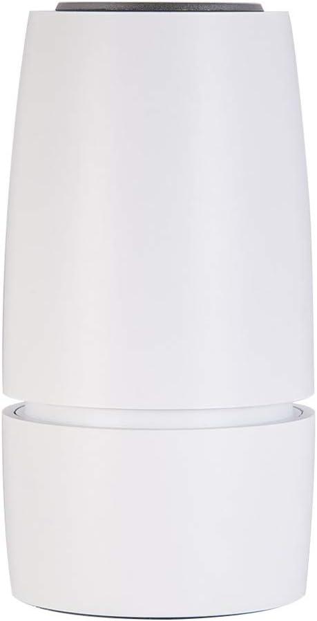 Shanna purificador de Aire para Auto, ambientador ionizador de Aire con True HEPA y filtros de carbón Activo, Elimina el formaldehído PM2.5 Benzene TVOC Air Cleaner ...