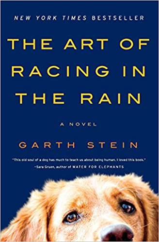 Amazon com: The Art of Racing in the Rain: A Novel
