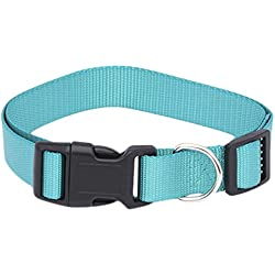Pet Champion Classic No Pull Extra Durable Adjustable Dog Collar, Sapphire Teal, Small 3/8in x 8-14in