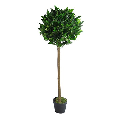 Leaf Artificial Topiary Bay Laurel Tree Ball Style Twisted or Plain Stem in Black Plastic Pot, 120cm (4ft)