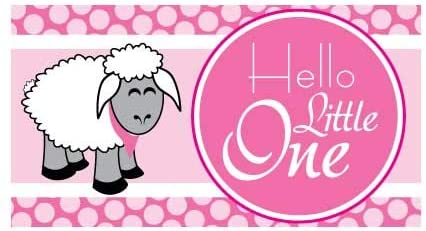 Amazon Com Victorystore Baby Shower Decorations Hello Little One Baby Shower Banner Baby Sheep Waterproof Vinyl Banner Pink 3 Feet Tall Home Kitchen