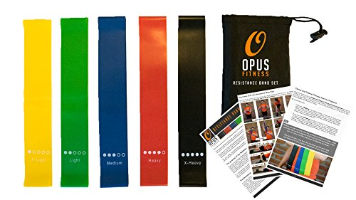 Opus Fitness Resistance Bands Training Exercise Set – 80 Day Obsession Equipment – Also for Injury Rehabilitation and Physical Therapy – Set of Five Bands with Carrying Case and Full Instructions by Opus Fitness
