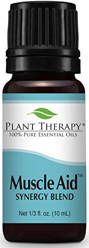 Plant Therapy Muscle Aid Synergy Essential Oil Blend. 100% Pure, Undiluted, Therapeutic Grade. Blend of: Wintergreen, Camphor and Pine. 10 ml (1/3 oz).