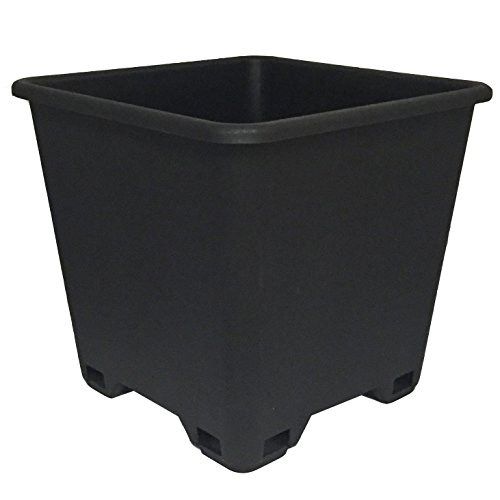 Plastic Planter Round (Trade 7 Gallon, Re-usable Square Nursery Pot, Case of 5)