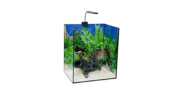 Radys Kit Acuario Nano 54L (Luz y Filtro): Amazon.es: Productos para mascotas
