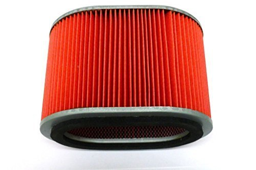 AIR FILTER HONDA 17211-431-671, Manufacturer: EMGO, Part Number: 202120-AD, VPN: 12-90010-AD, Condition: New