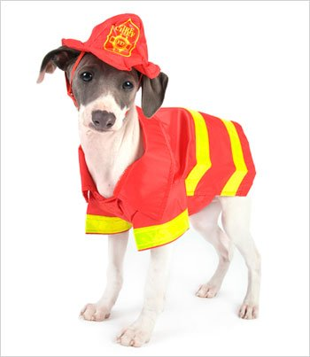Fireman Costume for Dogs - Size 5 (14