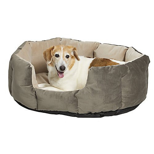 """41xRa3454qL - Midwest Homes for Pets QuietTime Deluxe """"Tulip"""" Nesting Pet Bed"""