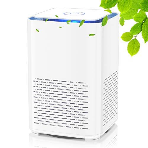 Luftreiniger mit Echtem HEPA-Filter und Aktivkohlefilter,Leiser USB-Luftfilter mit Aromatherapie-Funktion und Nachtlicht,für Wohnung, Raucherzimmer