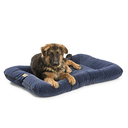 West Paw Design Heyday Dog Bed with Microsuede, Super Durable and Easy to Clean Pet Bed, Midnight, X-Large