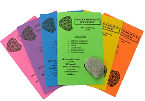 PETOSKEY STONE (includes real petoskey stone!) Rock Polishing Kit DIY Fun For All Ages!