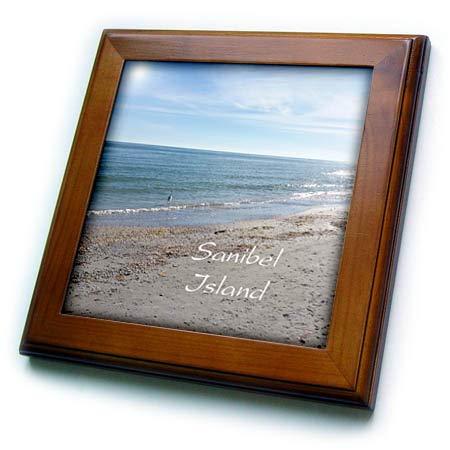 3dRose Lens Art by Florene - Florida - Image of Heron On Sanibel Island Beach - 8x8 Framed Tile (ft_312608_1)