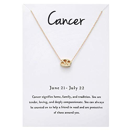 Astrology Horoscope Sign - Snowpra 12 Constellation Pendant Necklace Astrology Gold Tone Chain with Message Card