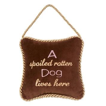 Amazon.com: Leyla de almohadas de terciopelo decorativo ...