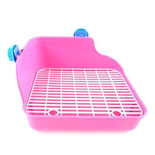 5f475a40cd91 Pet Mouse Toilet
