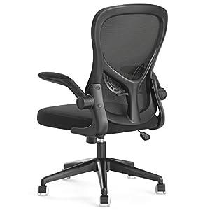 Hbada Ergonomic Desk Chair, Computer Office Chair with Flip-up Armrest&Lumbar Support, Adjustable Height, Black