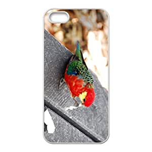 Rosella Hight Quality Plastic Case for Iphone 5s