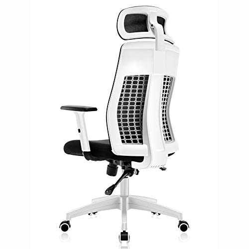(Swivel Chair, Mesh Gauze Hollow Cloth Computer Chair Household Ergonomic Chair Comfort Sedentary Chair Backrest Office Chair Leisure Seat, with Headrest, White/Black Task Chair (Color : White))