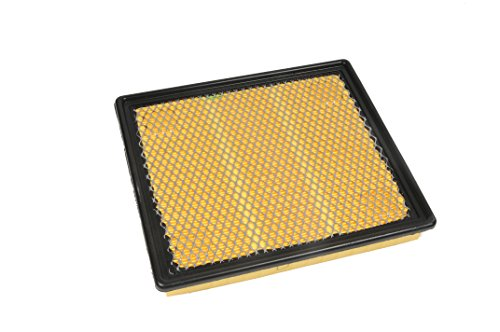 Chevrolet Malibu Air (ACDelco A3174C Professional Air Filter)