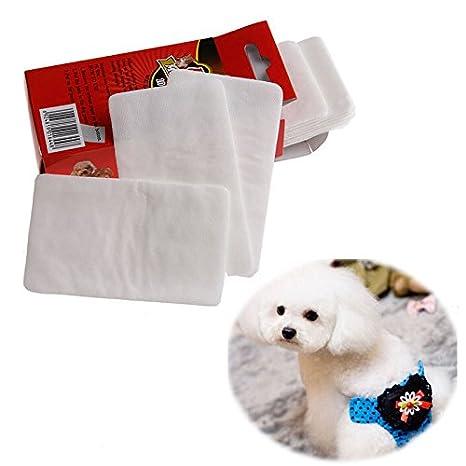 Dabixx 1 paquete de almohadillas desechables para pañales para perro, gato, pañales de papel