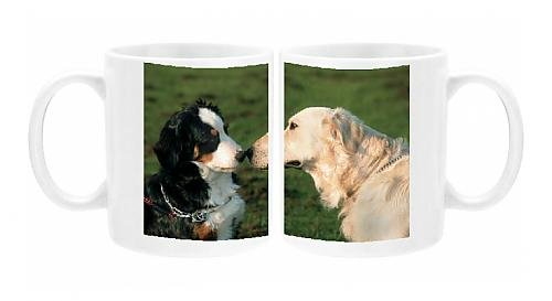 photo-mug-of-dogs-bernese-mountain-dog-and-golden-retriever-sniffing-each-others-nose