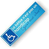 Autocollants Place réservée Handicapé - La bêtise n'est pas un handicap - Lot de 20