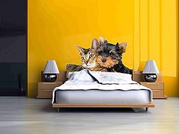 Cabecero Cama PVC Gato y Perro | Medidas 115x60 cm | Fácil colocación | Decoración Habitación | Motivos paisajisticos | Naturaleza | Urbes | Multicolor ...