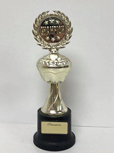 Amazon.com: Champion trofeo de premio, plástico Actividad ...