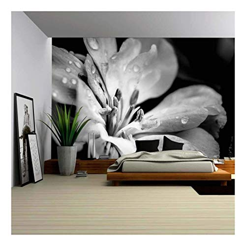 wall26 - Flower with Raindrops - Canvas Art Wall Mural Decor - 66