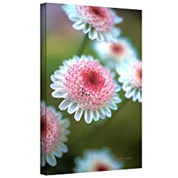 Art Wall Kathy Yates Pincushion Flowers Gallery Wrapped Canvas Art, 48 By 32-inch