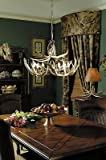Teton Chandelier For Sale