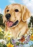 """Golden Retriever Dog – Tamara Burnett Summer Flowers House Dog Breed Flag 28"""" x 40"""" Review"""