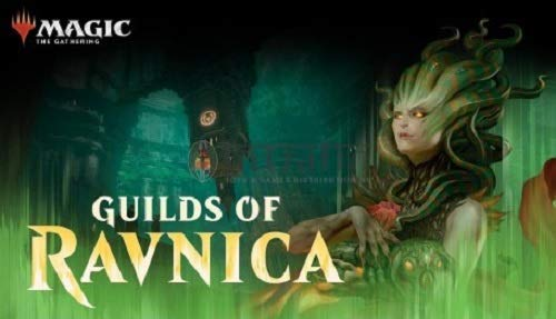 MTG Magic the Gathering Guilds of Ravnica Guild Kit All 5 Decks Wizards of The Coast