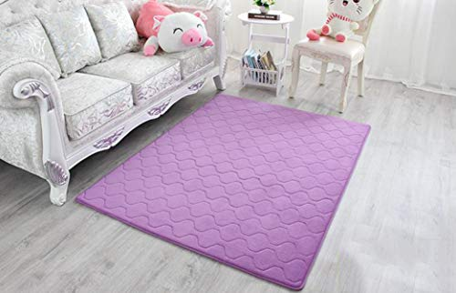 WONNA Ultra Soft Thick Memory Foam Mat Absorbent Coral Fleece Fabric Area Rugs Washable Living Room Carpet Bathroom Rugs Set ()