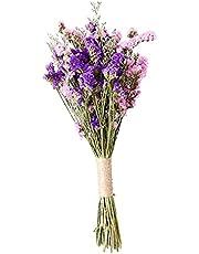 MagiDeal Natuurlijke gedroogde bloem bruiloft partij boeketten arrangementen decoratieve bloemen boeket