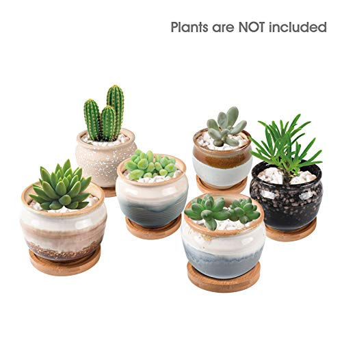 KORAM 3.5 Inch Ceramic Succulent Pots, Cactus Plant Pot Set Flower Planter Retro Flowing Glaze Bonsai Container with Hole Home Garden Office Decoration (Pack of 6)