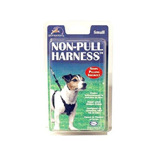 Arnes perro anti-tirones. The Company of Animals [3 medidas ...