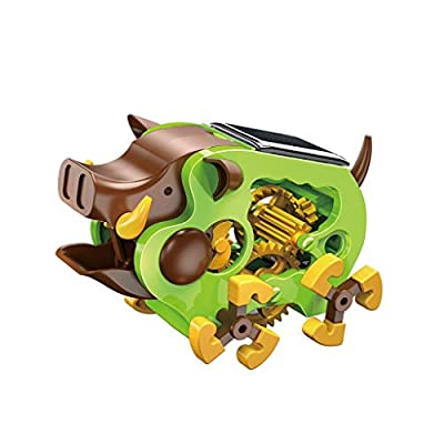 Scientific Toy Solar Powered Wild Boar Educational Toy
